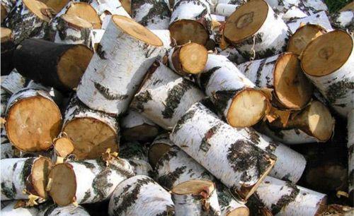 Берёзовые дрова стали самыми распространёнными на сегодняшний день