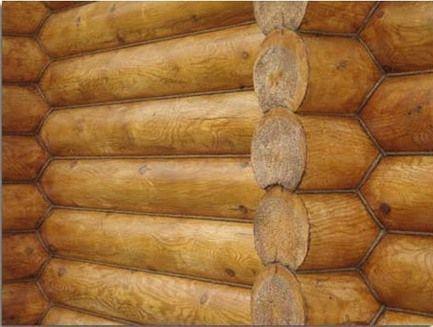 Неповторимый рисунок дерева уникален