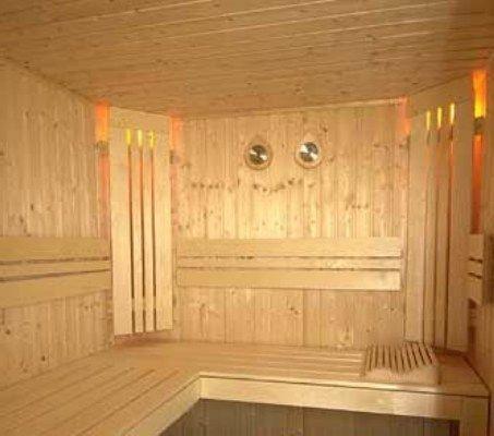 Вентиляционные отверстия в сауне могут располагаться  под потолком, напротив электропечи