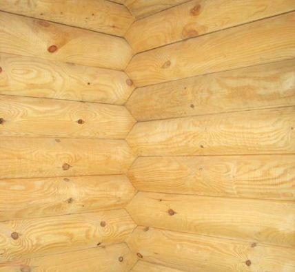 Стена из дерева в бане